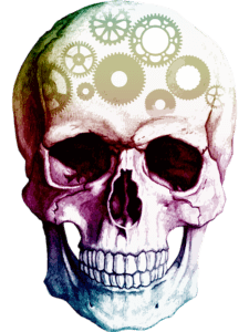 Thinking skull - time to re-evaluate